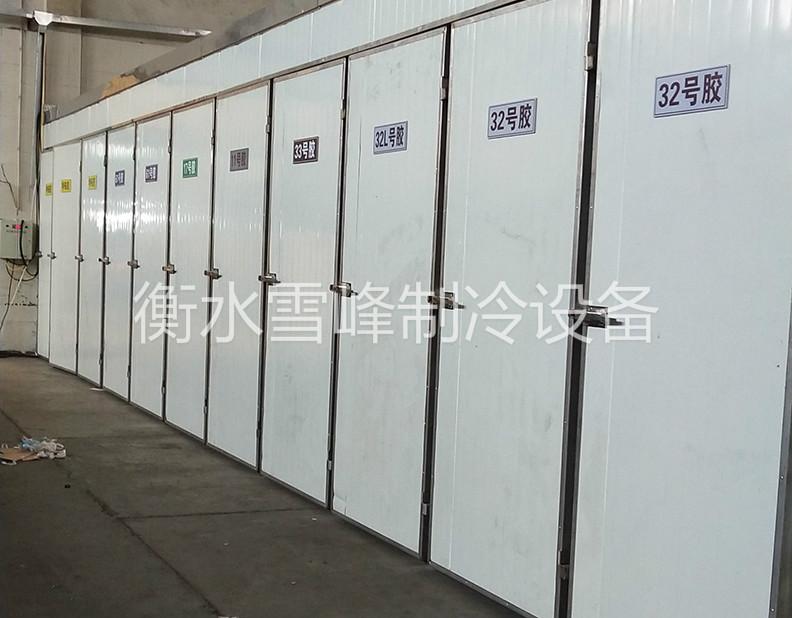 河北冀州胶管项目