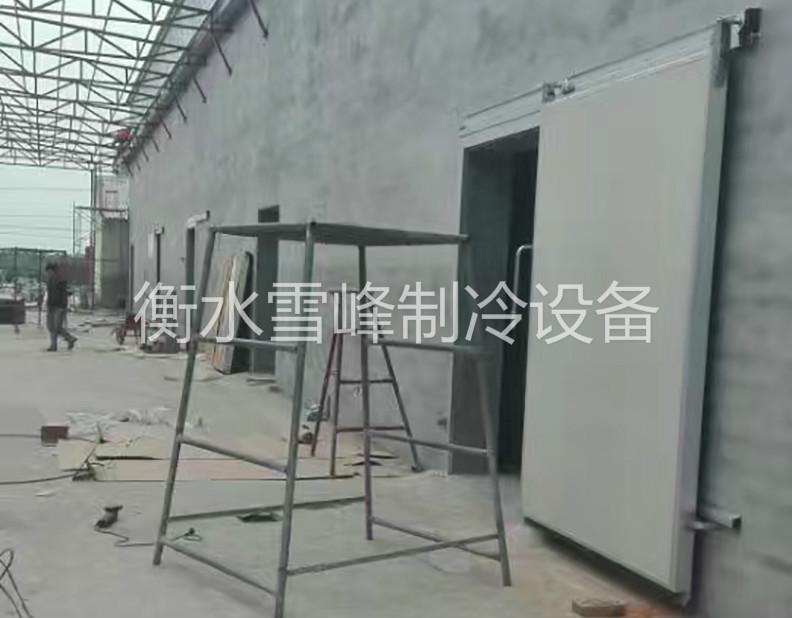 河北辛集梨储藏库项目